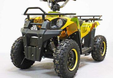 Квадроцикл GreenCamel Гоби K40 (36V 800W R6 Цепной привод)