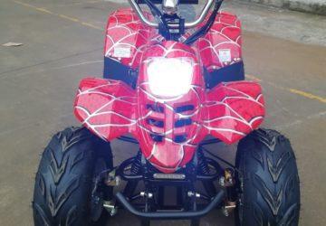 Квадроцикл GreenCamel Гоби K55 (36V 800W R7 Цепной привод)