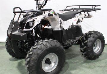Квадроцикл GreenCamel Атакама T220 (48V 1000W R8 Дифференциал)